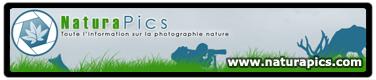 Communauté francophone de photographie nature